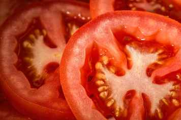 tomato-red-salad-food.jpg